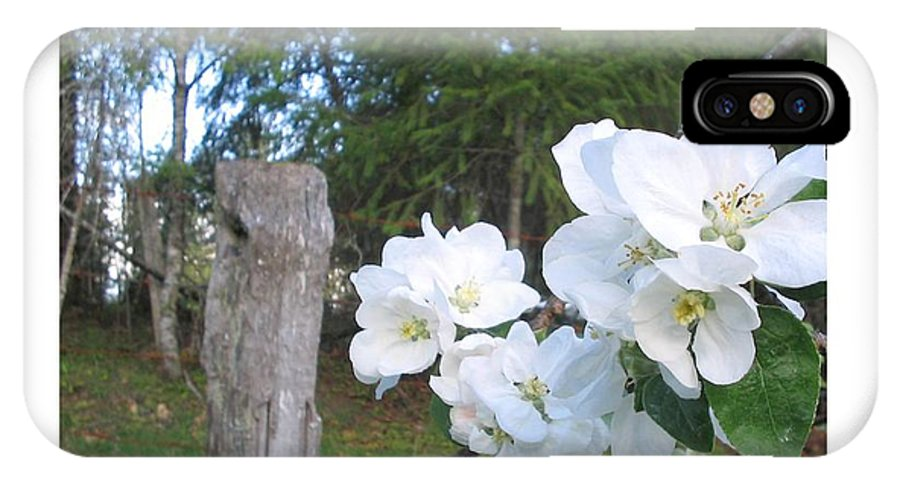 Flowers IPhone X Case featuring the photograph White Flowers by Valerie Josi