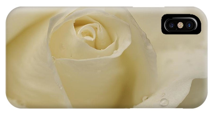 White Rose IPhone X Case featuring the photograph White by Martina Fagan