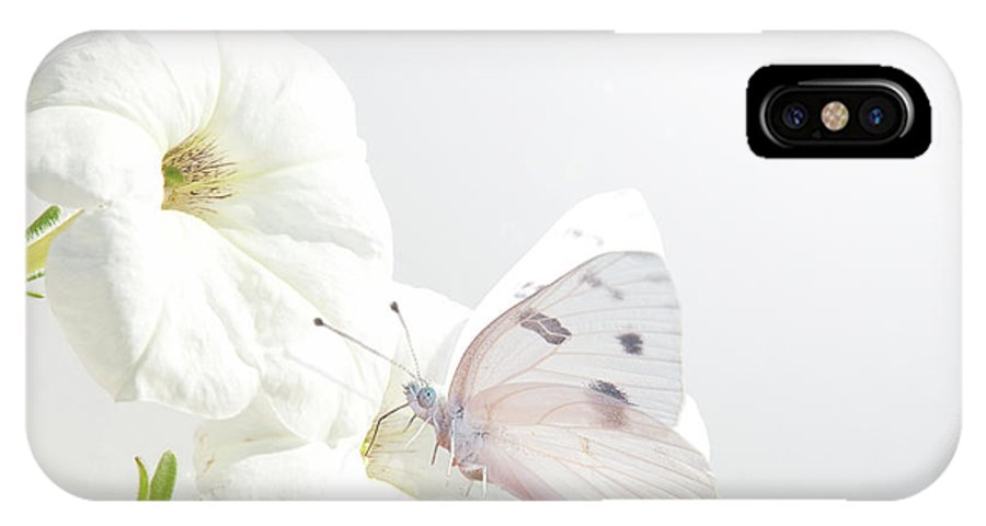 Butterfly IPhone X Case featuring the photograph White On White by Sari ONeal