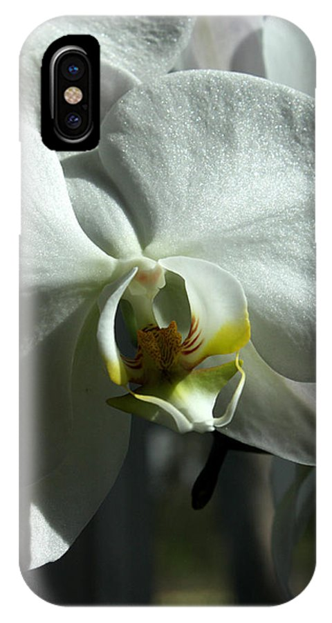 White IPhone X Case featuring the photograph White Orchid by David Bearden