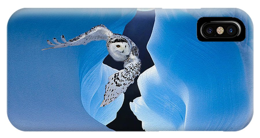 Owl IPhone X Case featuring the photograph White Owl by Jack Zulli