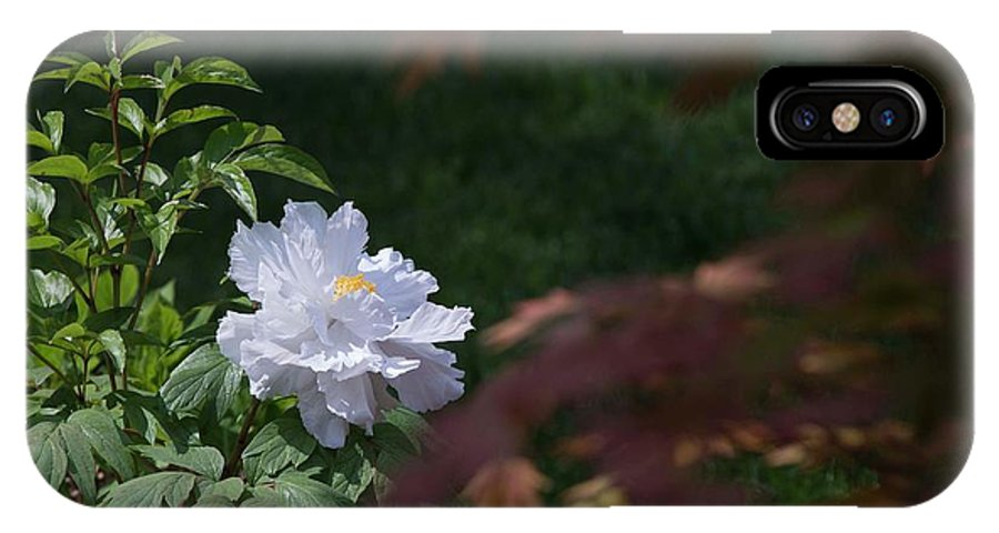 White IPhone X Case featuring the photograph White Peony by David Bearden