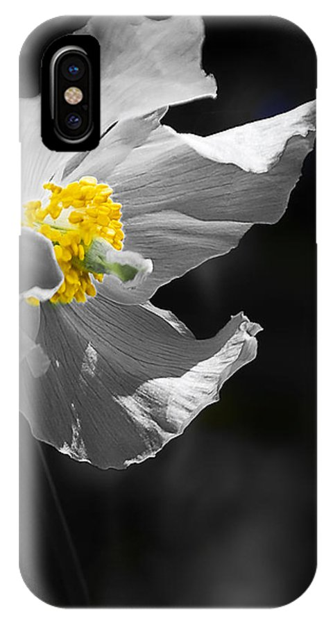 Flower IPhone X Case featuring the photograph White Poppy by Svetlana Sewell