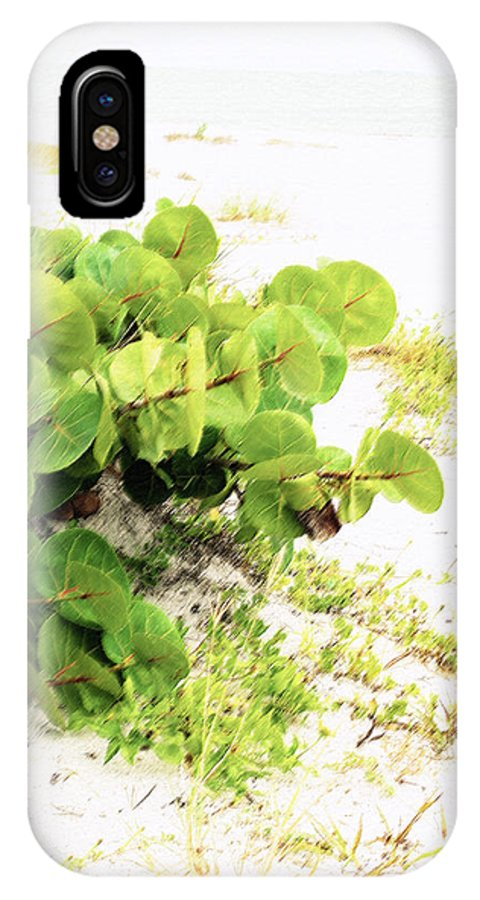 Florida IPhone X Case featuring the photograph White Sand Beach by Ian MacDonald