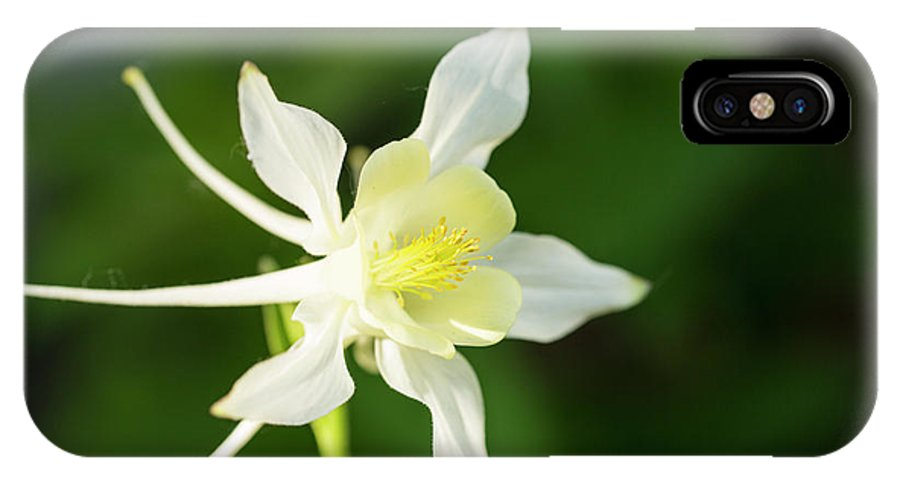 White Star Flower IPhone X Case featuring the photograph White Star by Photopoint Art