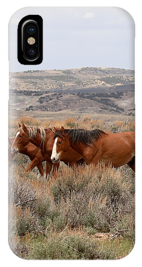 Horse IPhone X / XS Case featuring the photograph Wild Horse Trio by Max Allen