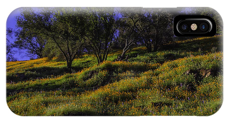 Hill Side IPhone X Case featuring the photograph Wild Poppies by Garry Gay