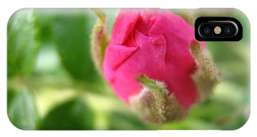 Rose IPhone X Case featuring the photograph Wild Rose Bud by Melissa Parks