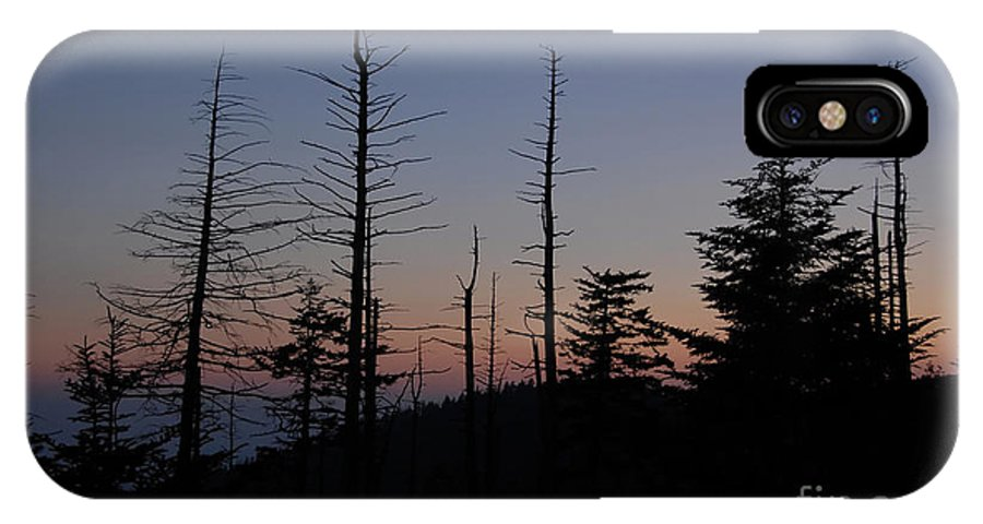 Wilderness IPhone X Case featuring the photograph Wilderness by David Lee Thompson