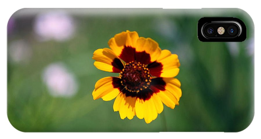 Wildflower IPhone X Case featuring the photograph Wildflower by Phil Burton