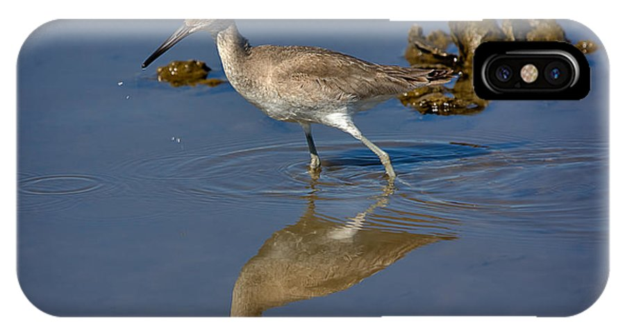 Nature IPhone X Case featuring the photograph Willet Searching For Food In An Oyster Bed by Louise Heusinkveld