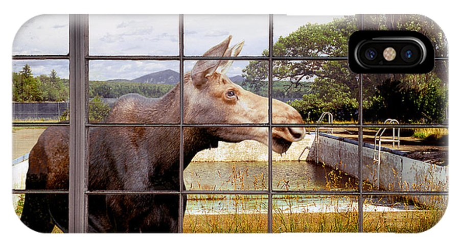 Moose IPhone Case featuring the photograph Window - Moosehead Lake by Peter J Sucy