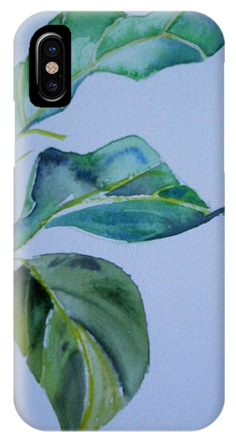 Nature IPhone X Case featuring the painting Window View by Suzanne Udell Levinger