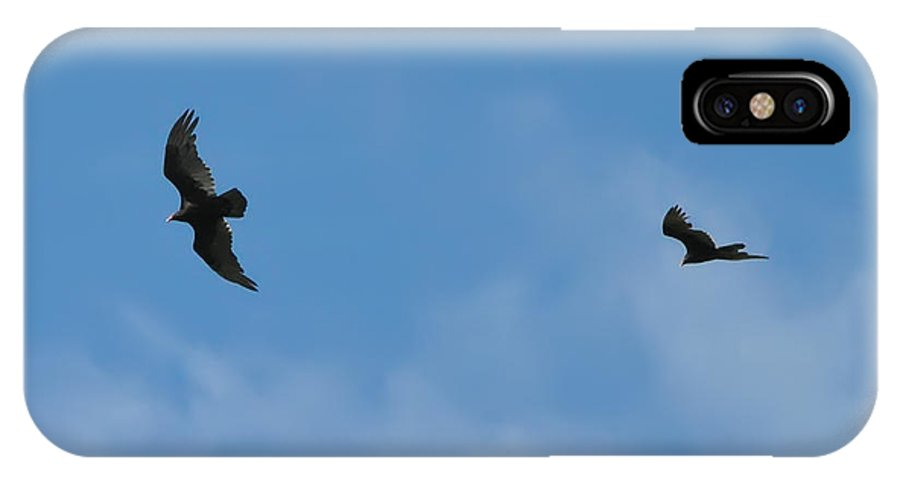 Hawks IPhone X Case featuring the photograph Wingman by Bill Cannon