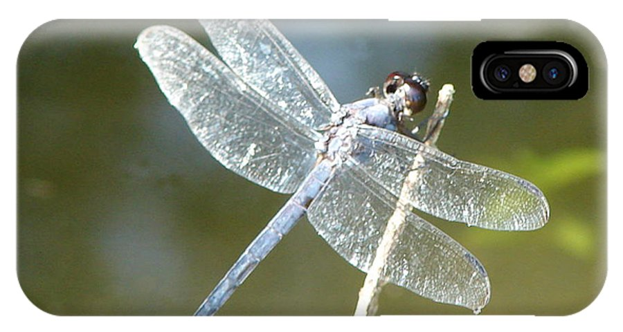 Dragonfly Wings IPhone X / XS Case featuring the photograph Wings by Luciana Seymour