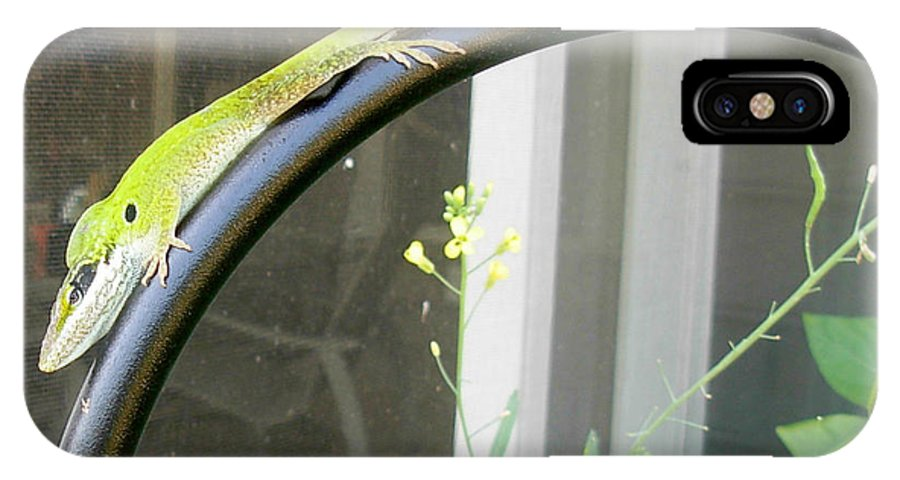 Winning Anole IPhone X Case featuring the photograph Winning Anole by Jeanne Kay Juhos