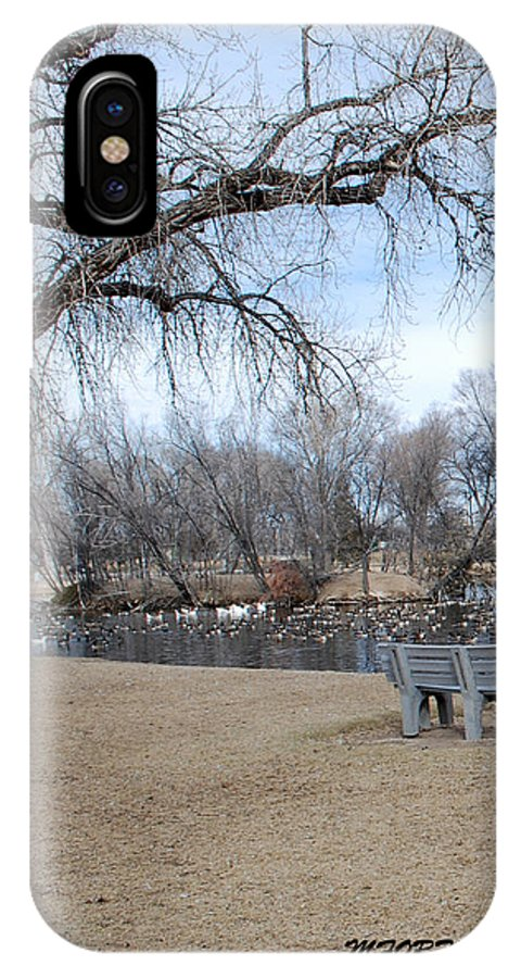 Trees IPhone Case featuring the photograph Winter Duck Pond by Margaret Fortunato