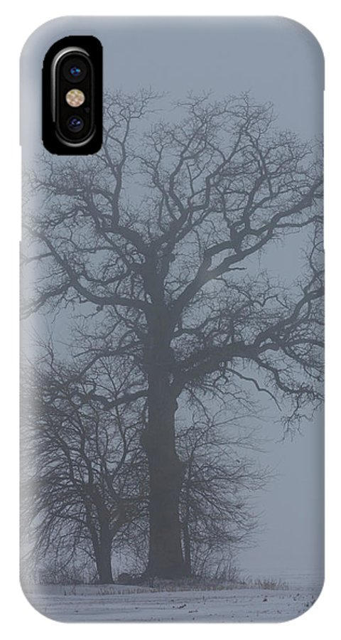 Tree IPhone X Case featuring the photograph Winter Fog by Carl Purcell