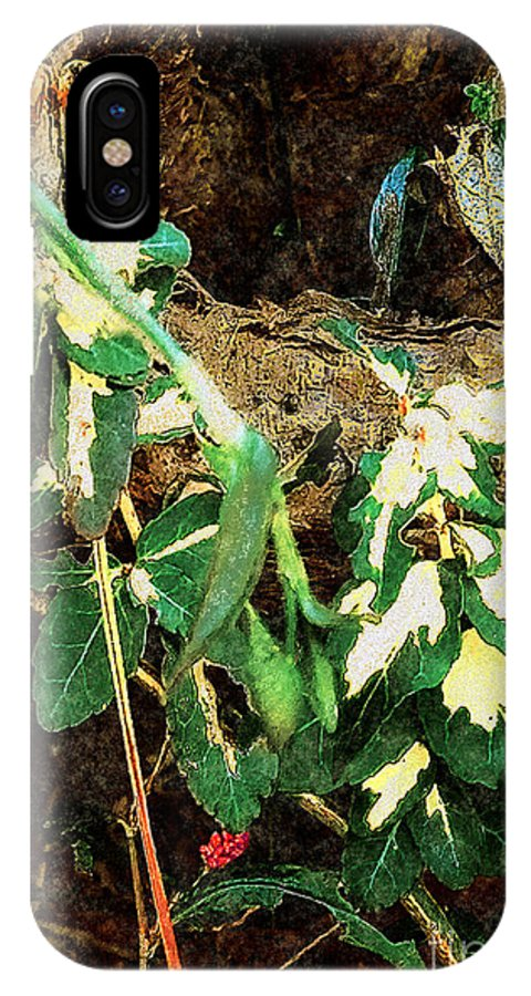 Autumn IPhone X Case featuring the painting Winter Hideout by RC DeWinter