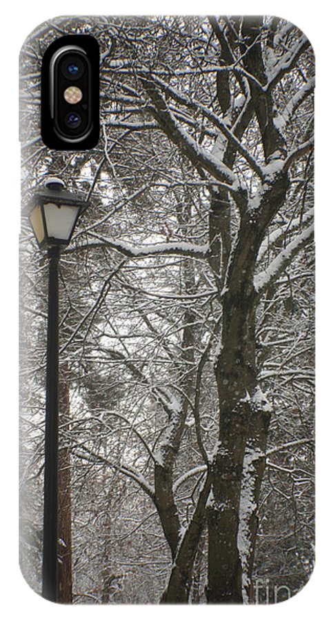 Lamp IPhone X Case featuring the photograph Winter Lamp Post by Idaho Scenic Images Linda Lantzy
