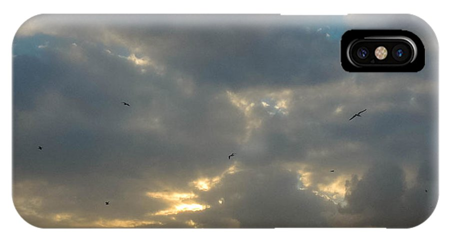 Birds IPhone X / XS Case featuring the photograph Winter Morning Scape by Chris Patel