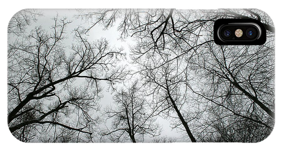 Winter Sky Tree Trees Grey Gloomy Peaceful Quite Calm Peace Cloudy Overcast Dark IPhone Case featuring the photograph Winter Sky by Andrei Shliakhau