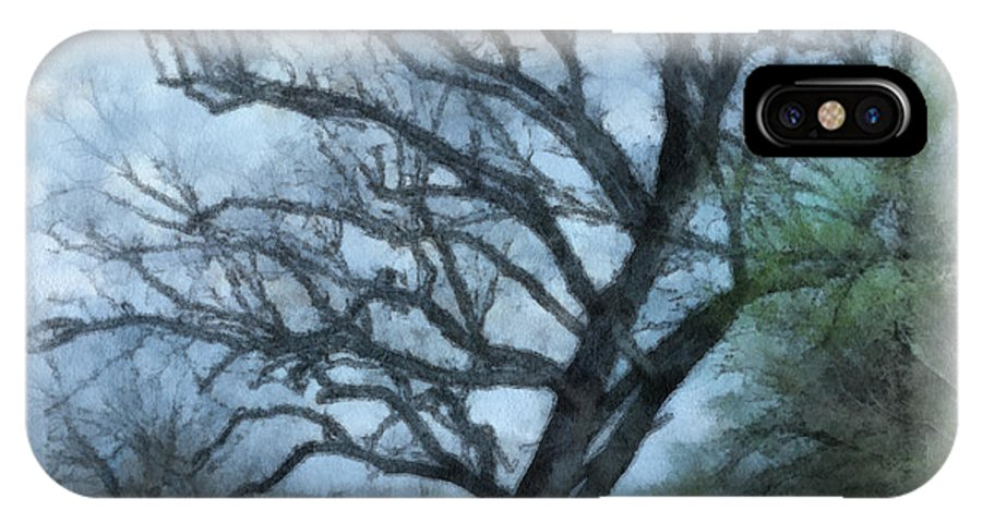 Texas IPhone X Case featuring the photograph Winter Tree by Paulette B Wright