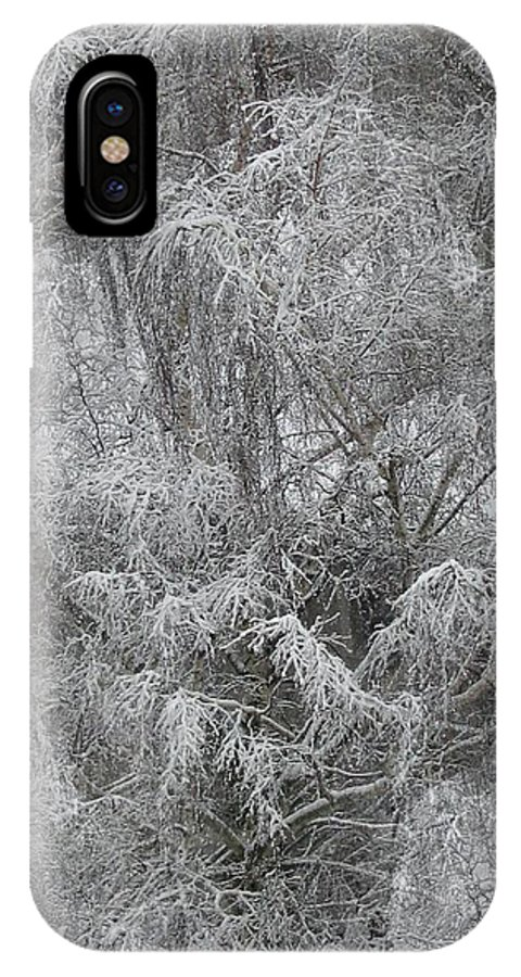 Winter IPhone X Case featuring the photograph Winter Trees by Tim Allen