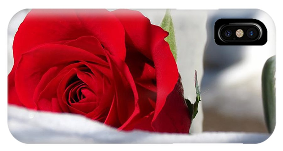 Photography IPhone X Case featuring the photograph Winters Rose by Kyle West