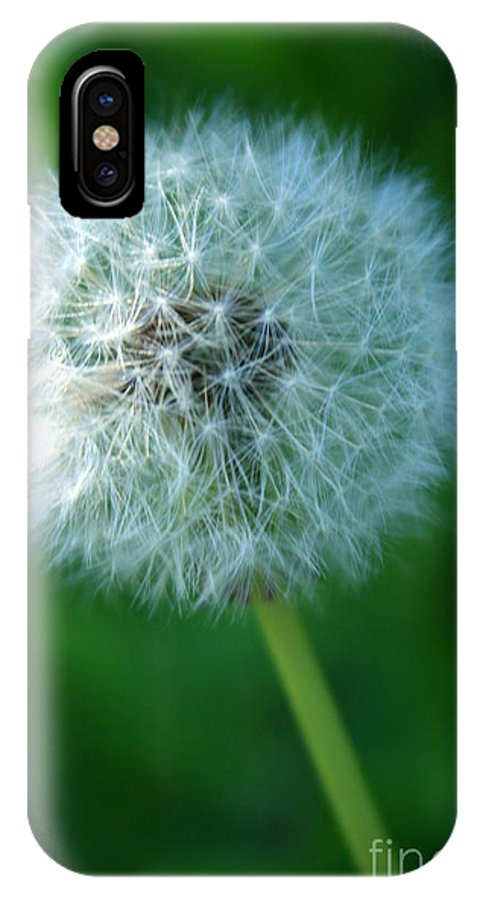 Dandelion Flower IPhone X Case featuring the photograph Wishful Thinking by Heather Newkirk