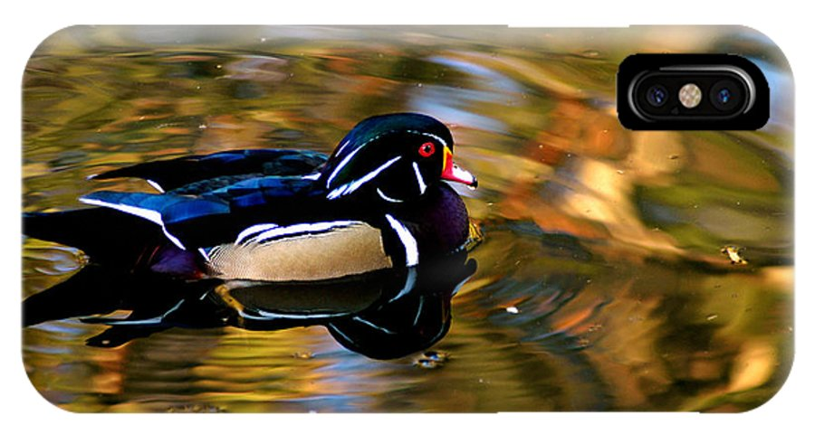 Clay IPhone X Case featuring the photograph Wood Duck by Clayton Bruster
