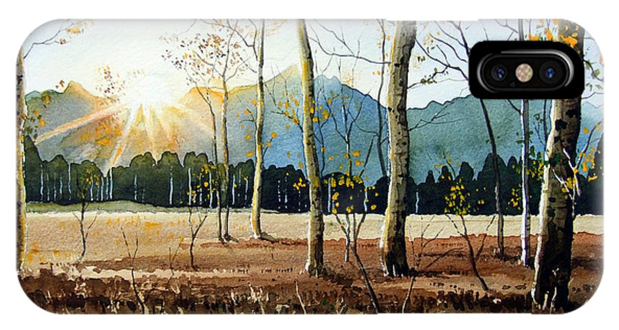 Landscape IPhone Case featuring the painting Woodland Sunset by Paul Dene Marlor