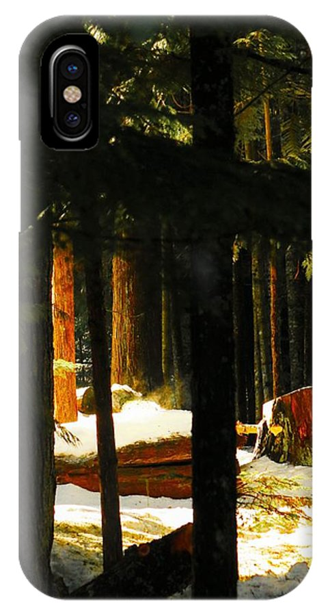 Nature IPhone X Case featuring the photograph Woods by Lisa Spero