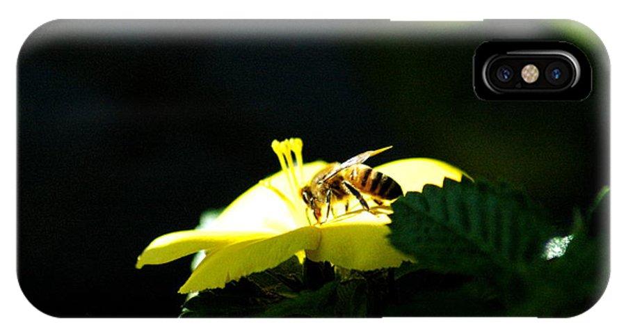 Teresa Blanton IPhone X Case featuring the photograph Working Bee by Teresa Blanton