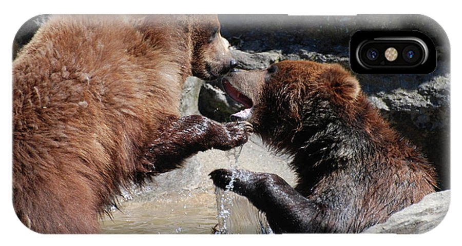 Grizzly IPhone X Case featuring the photograph Wrestling Grizzly Bears In A Shallow River by DejaVu Designs