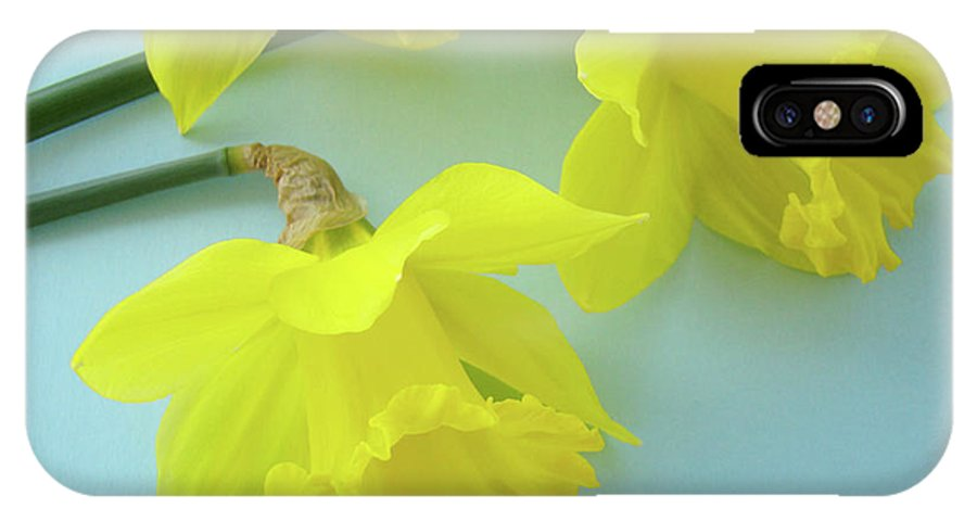 �daffodils Artwork� IPhone X Case featuring the photograph Yellow Daffodils Artwork Spring Flowers Art Prints Nature Floral Art by Baslee Troutman