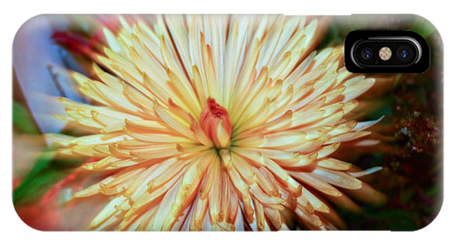Yellow Dahlia Photo IPhone X / XS Case featuring the photograph Yellow Dahlia by Charrie Shockey