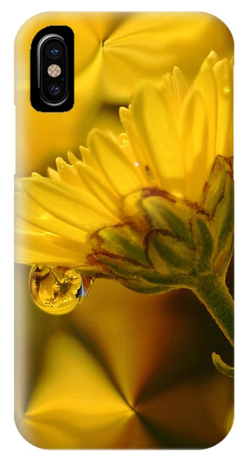 Flowers IPhone X Case featuring the photograph Yellow Drip by Linda Sannuti
