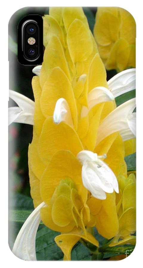Flower IPhone Case featuring the photograph Yellow Eruption by Shelley Jones
