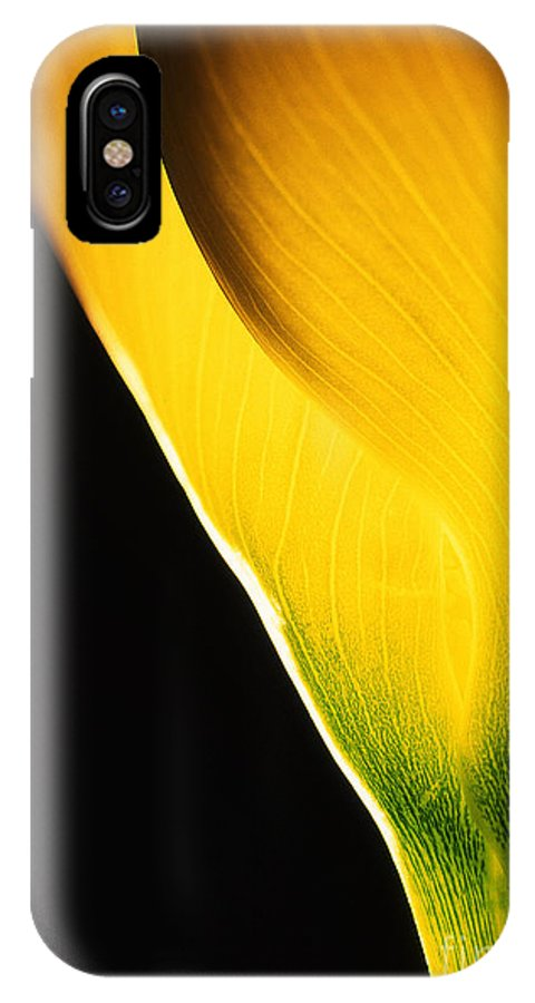 Flower IPhone X Case featuring the photograph Yellow Essence by Casper Cammeraat