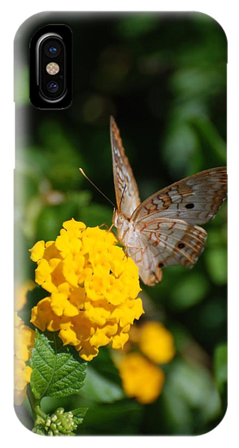 Butterfly IPhone X Case featuring the photograph Yellow Flower Brown Fly by Rob Hans