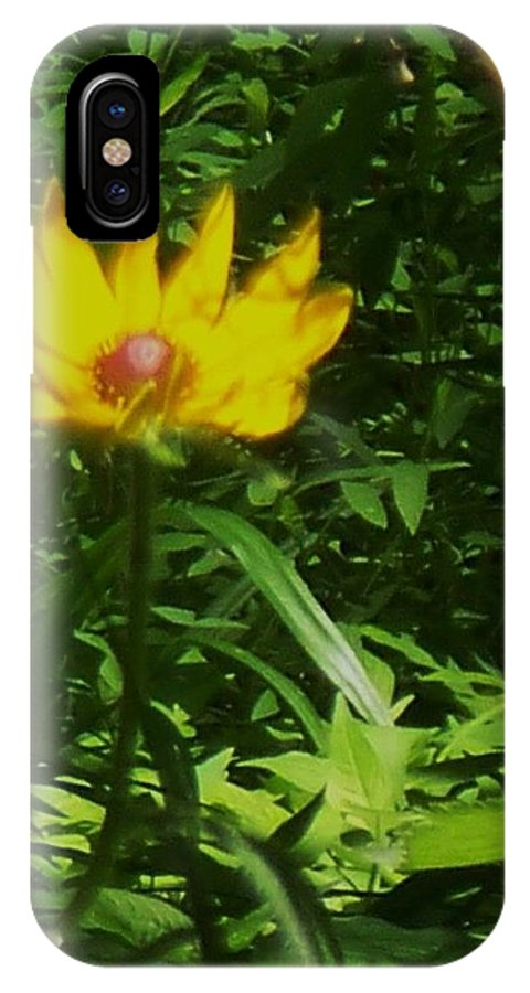 Flower IPhone X Case featuring the photograph Yellow Flower by Eric Schiabor