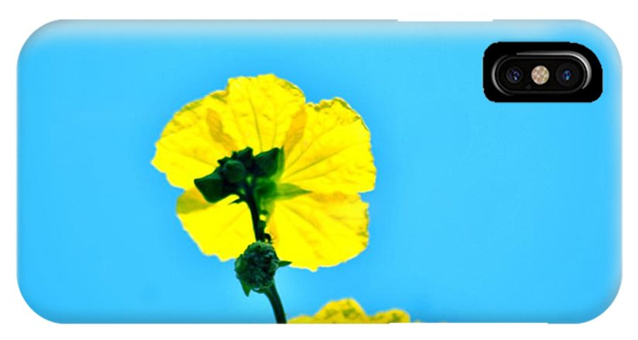 Yellow Flower IPhone X Case featuring the photograph Yellow Flower by Sandeep Kumar Dogra