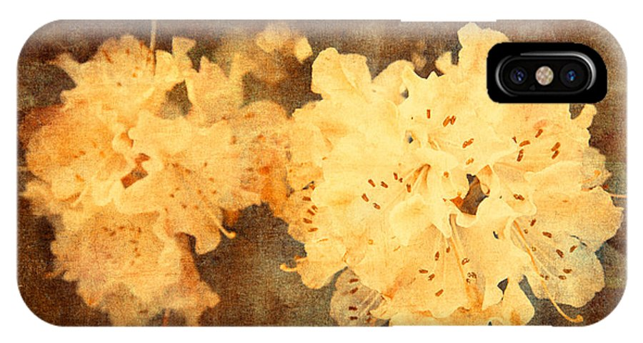 Yellow IPhone X / XS Case featuring the photograph Yellow Flowers In Bloom by Nadia Di Silvestro