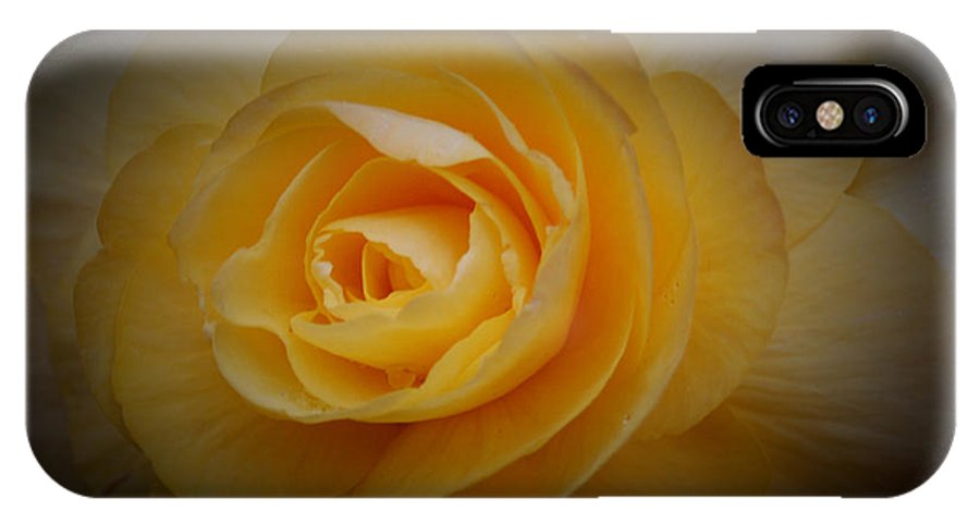 Yellow IPhone X Case featuring the photograph Yellow Glow by Sheila McDowell