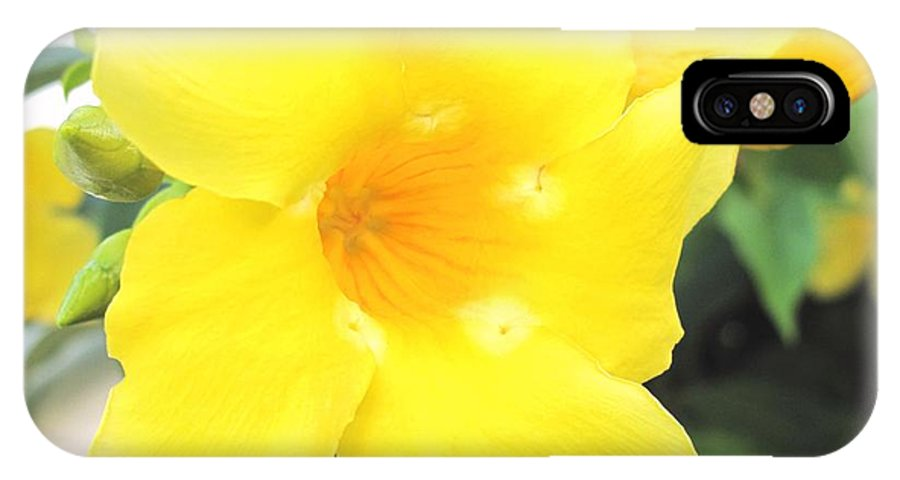Yellow IPhone X Case featuring the photograph Yellow Hibiscus St Kitts by Ian MacDonald