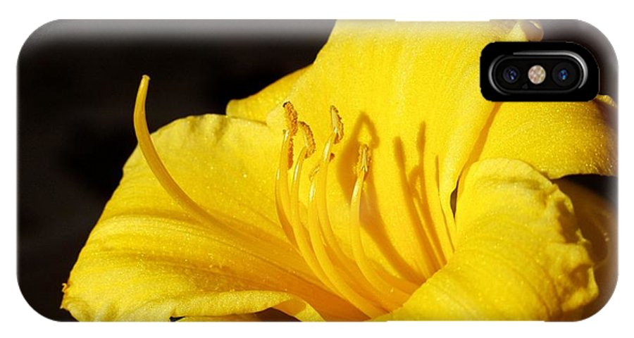 Yellow IPhone X Case featuring the photograph Yellow Lily by Carol Sweetwood