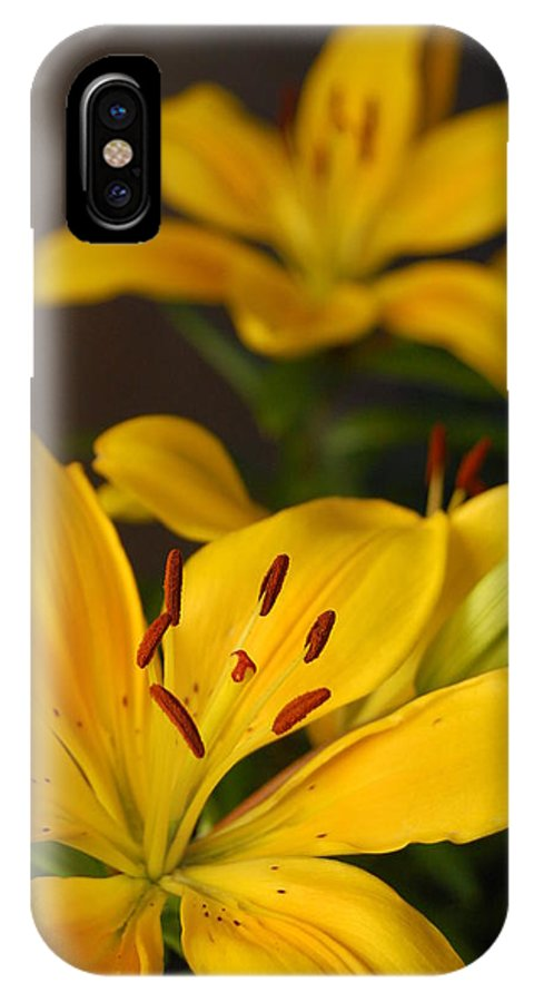 Flower IPhone X Case featuring the photograph Yellow Lily Mirror by Amy Fose