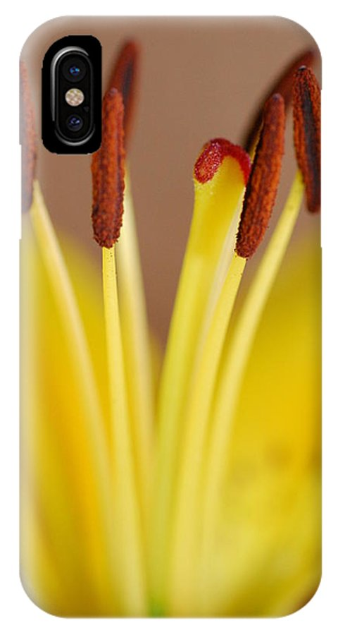 Flower IPhone X Case featuring the photograph Yellow Lily Reach 1 by Amy Fose
