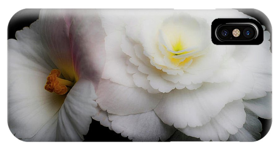 Flowers IPhone X Case featuring the photograph Yellow on White by Lee Santa